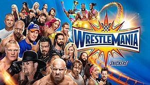 (Wrestling) 2017 WWE Wrestlemania Weekend